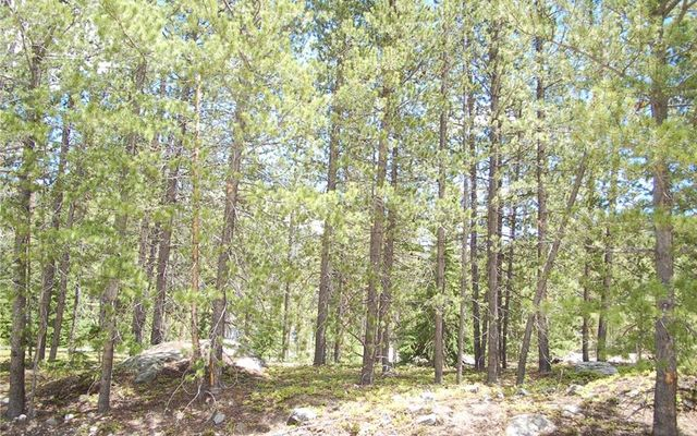 28 Lodestone Trail - photo 8