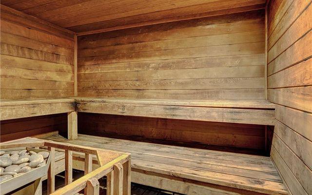 Lodge At Lake Dillon Condo 226 - photo 27