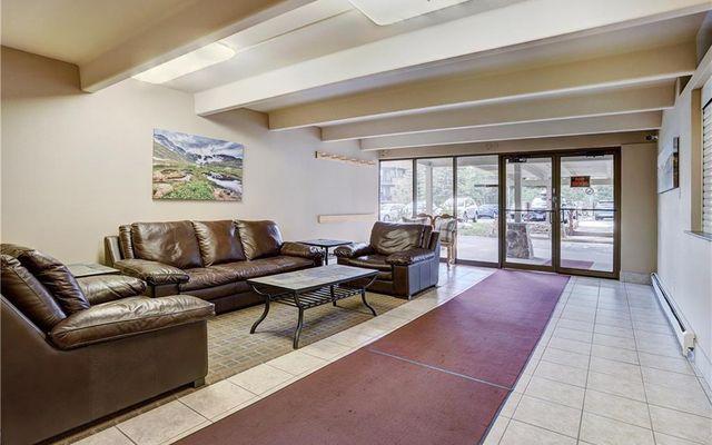 Lodge At Lake Dillon Condo 226 - photo 30