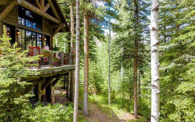 12 Cabin Creek Lane - photo 23