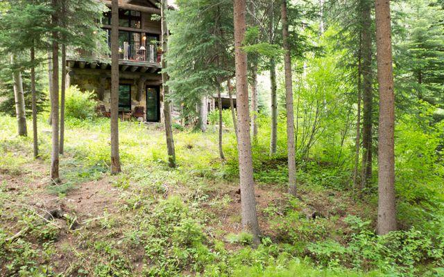 12 Cabin Creek Lane - photo 29