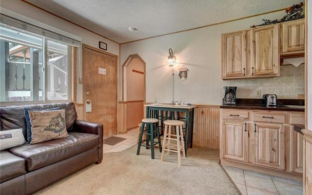 Breckenridge Park Meadows Condo 1-C - photo 1