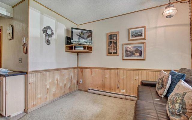 Breckenridge Park Meadows Condo 1-C - photo 5
