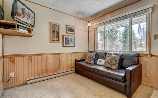 Breckenridge Park Meadows Condo 1-C - photo 6