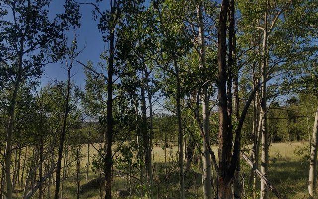 74 Antelope Circle - photo 3