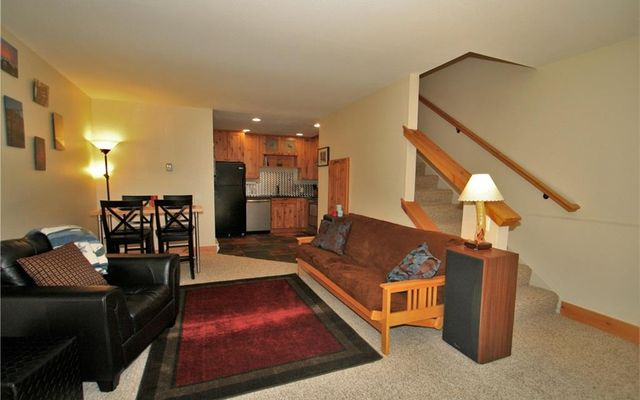 Silver King Lode Condo 3 - photo 10