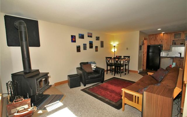 Silver King Lode Condo 3 - photo 2