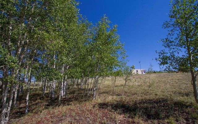 1991 PINTO Trail COMO, CO 80432