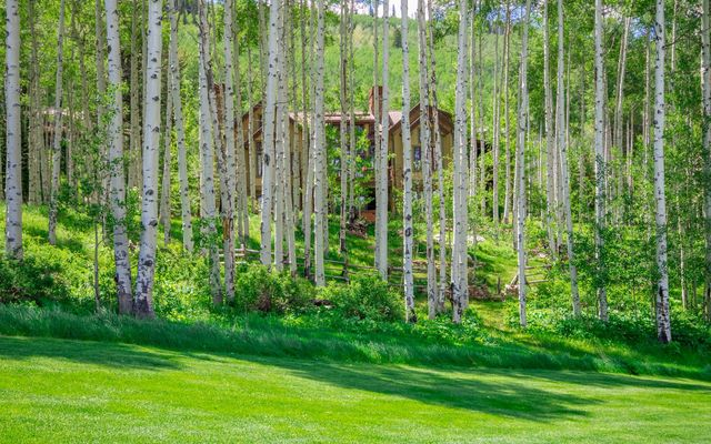 525 Forest Trail - photo 4
