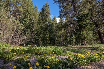 43 Wilderness Drive BLUE RIVER, CO