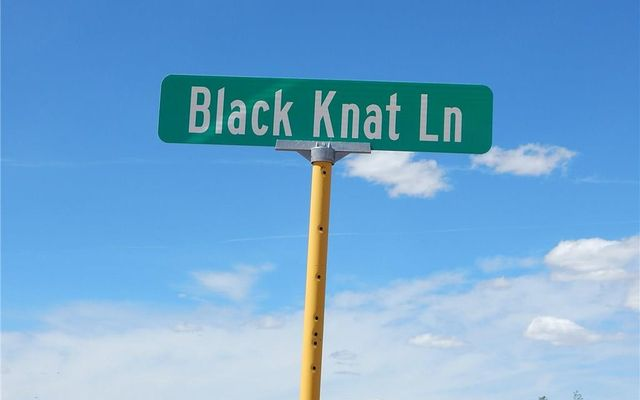 0 Black Knat Lane - photo 10