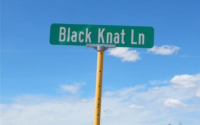 0 Black Knat Lane - photo 10