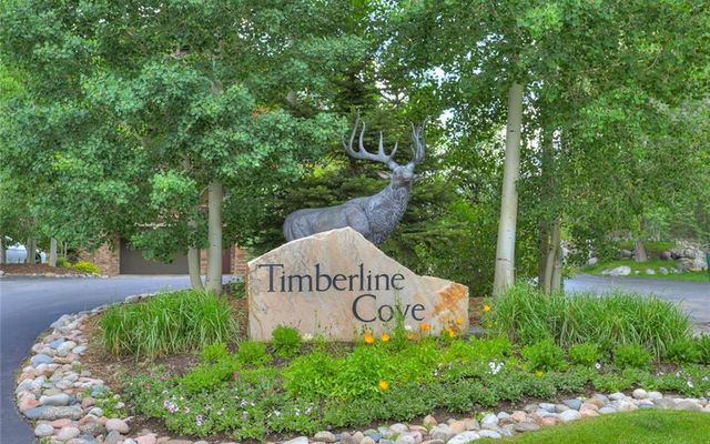 Timberline Cove Condos 310 - photo 6
