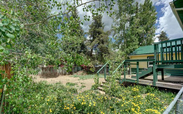1604 Mount Elbert Drive - photo 18