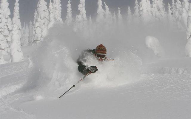 Snowdance Manor Condo 309 - photo 20