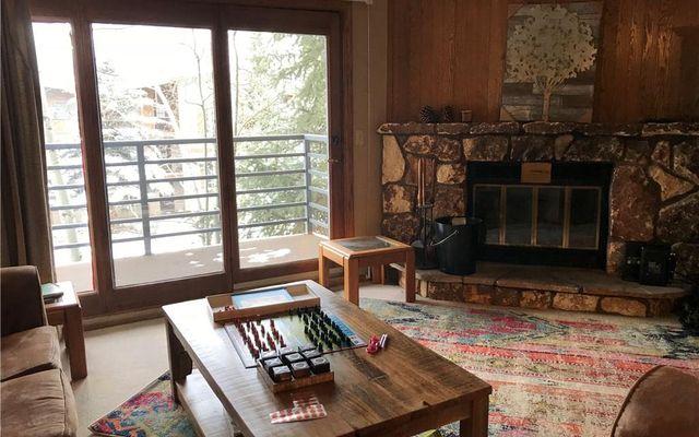 Snowdance Manor Condo 309 - photo 4
