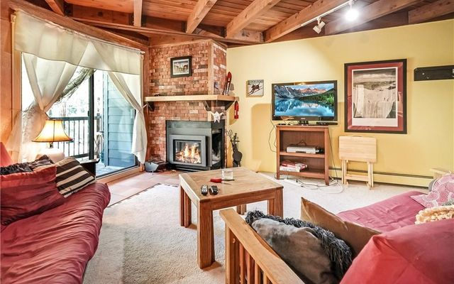 8100 Ryan Gulch Road E206 SILVERTHORNE, CO 80498