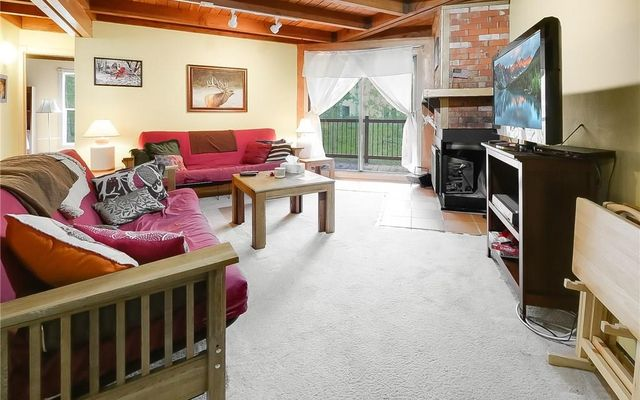 Treehouse Condo e206 - photo 21