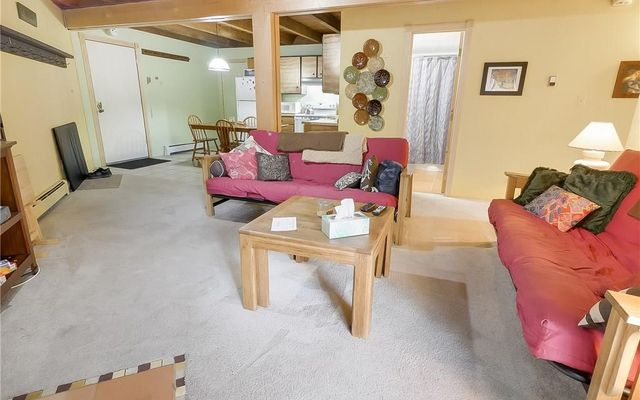 Treehouse Condo e206 - photo 22