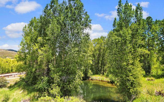 186 Brett Trail - photo 22
