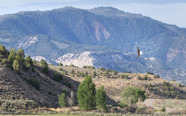12799 Colorado River Road - photo 22