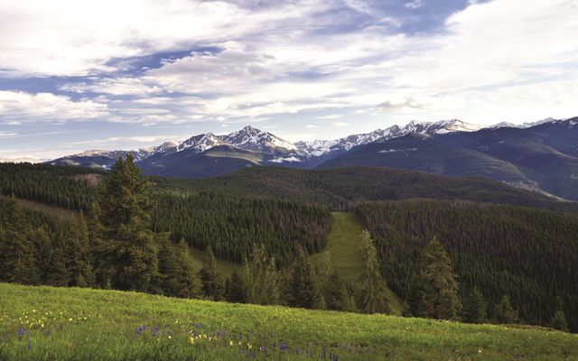 Four Seasons Resort Vail Private Residen 6101 - photo 21