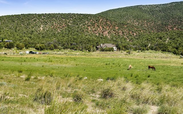 1005 Castle Peak Ranch Road - photo 2