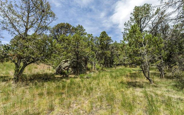 1005 Castle Peak Ranch Road - photo 40