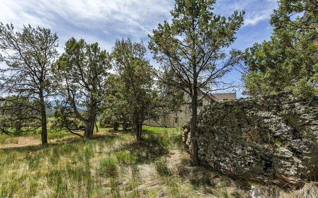 1005 Castle Peak Ranch Road - photo 41