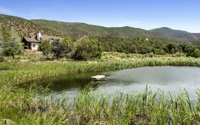 1005 Castle Peak Ranch Road - photo 5