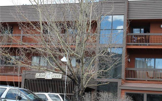 Cedar Lodge Condo 319 - photo 2