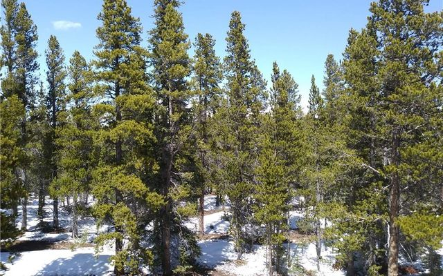 264 Gold Trail Circle - photo 25
