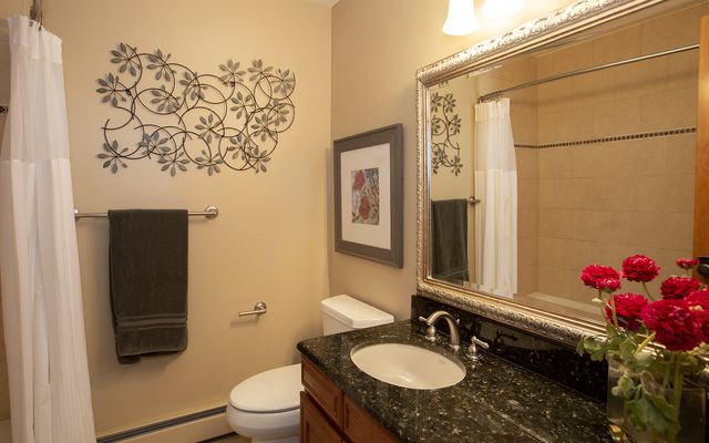Vail Village West 2 Ptarmigan Townhomes 31 - photo 13