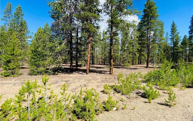 1550 Mountain Pines Court LEADVILLE, CO 80461