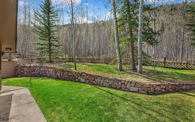 1388 Vail Valley Drive W - photo 5