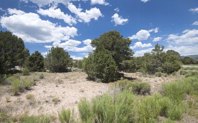803 Mesa Drive - photo 14