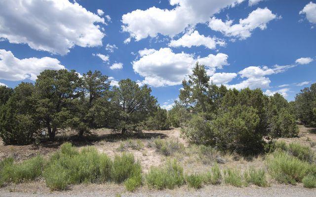 803 Mesa Drive - photo 15