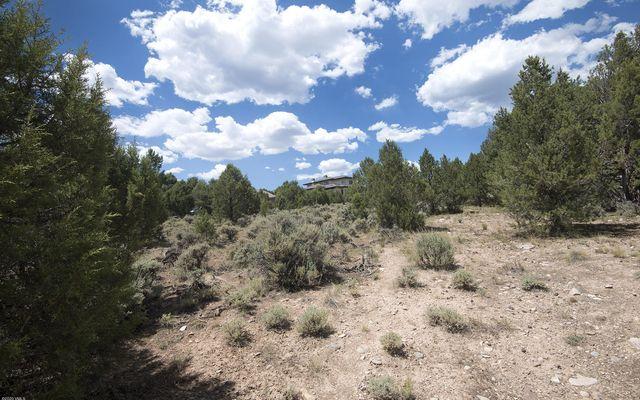 803 Mesa Drive - photo 18