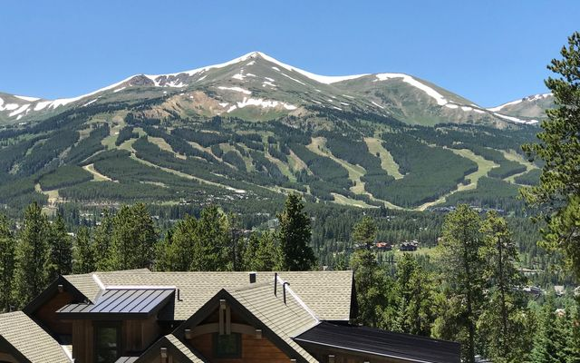 52 Stillson Placer Terrace BRECKENRIDGE, CO 80424