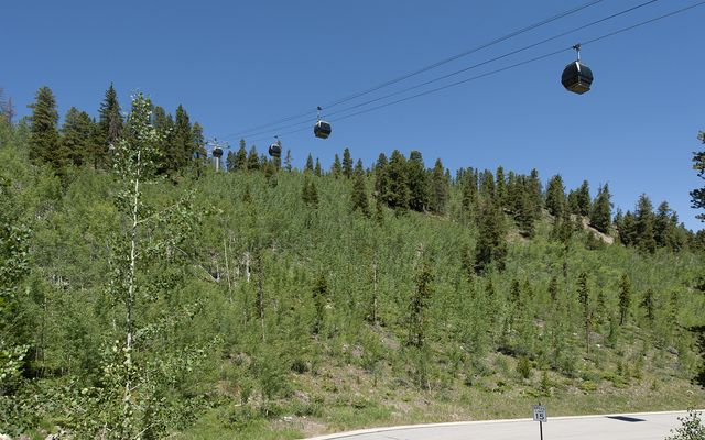 Woods At Breckenridge 20 - photo 32