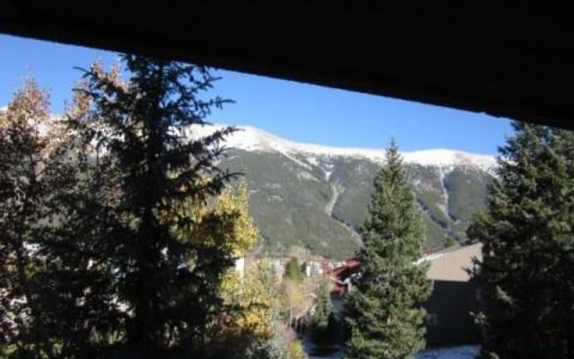 168 Ten Mile Circle #196 COPPER MOUNTAIN, CO 80443