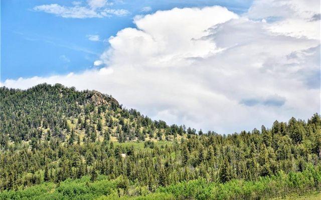 197 Swallow Rock Trail - photo 10
