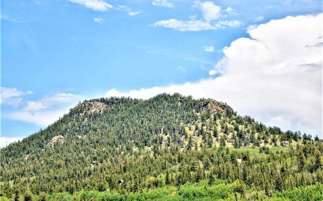 197 Swallow Rock Trail - photo 8
