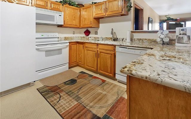 Buffalo Ridge/Village Condo 303bb - photo 8