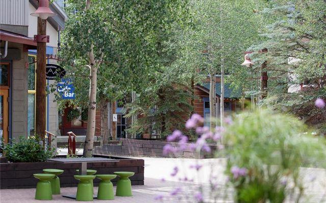 Silver Mill Condominiums 8153 - photo 32