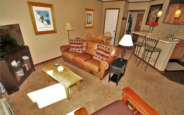 Telemark Lodge Condo 414 - photo 3