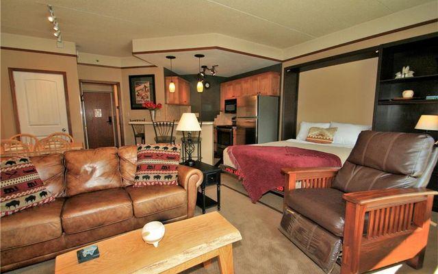 Telemark Lodge Condo 414 - photo 5