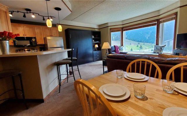 Telemark Lodge Condo 414 - photo 9