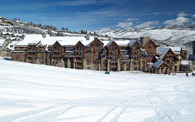 100 Bachelor Ridge 3304-Week 11 - photo 19