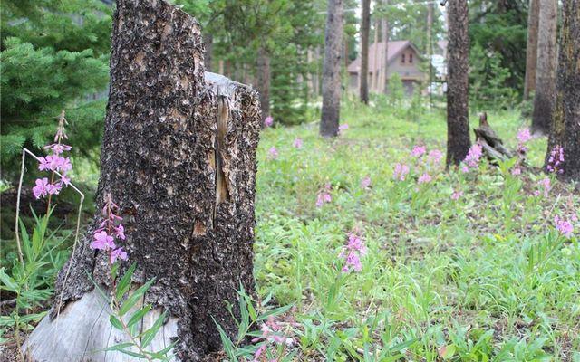 4134 Ski Hill Road - photo 8